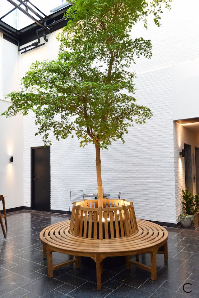 Entry with tree ink hotel amsterdam tried tested for Design boutique hotel nederland