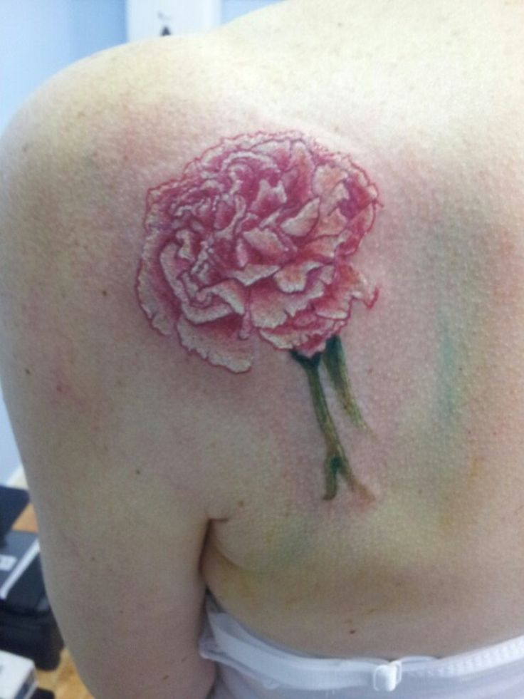 7 best carnation tattoos images on pinterest carnation for Red carnation tattoo