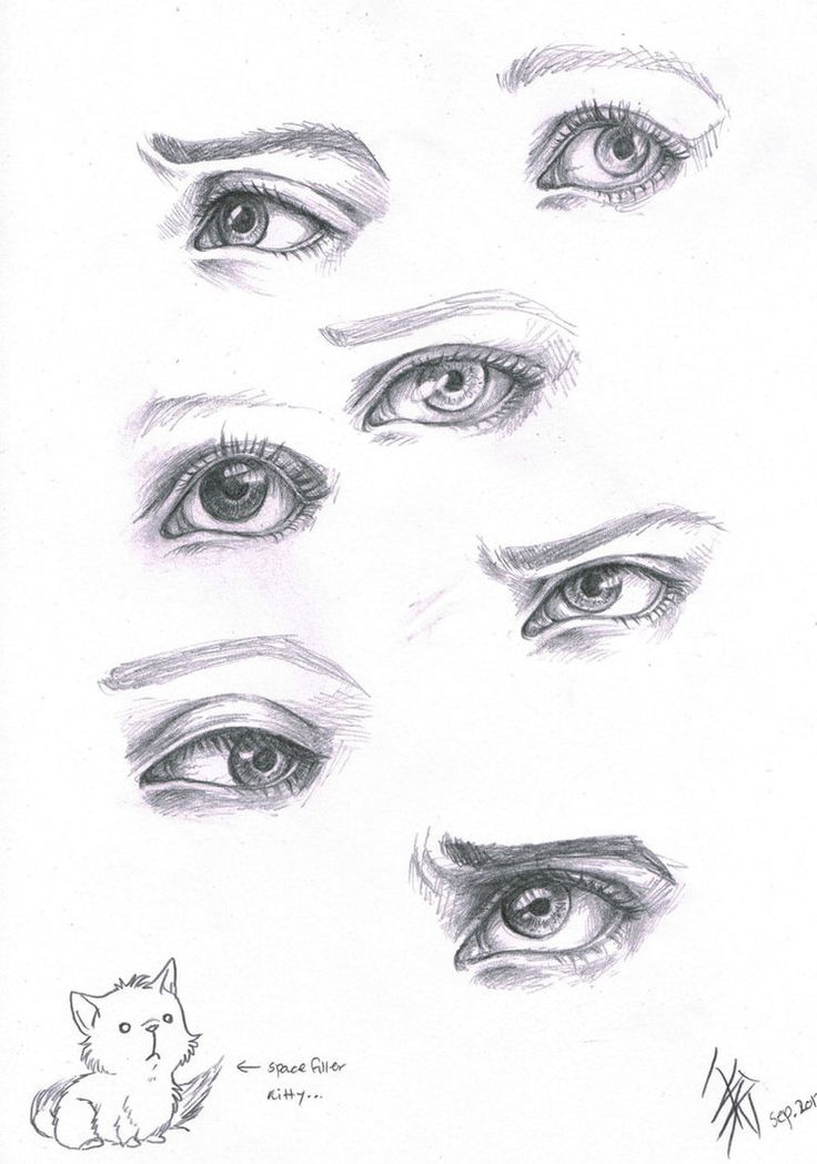 Eye Sketch Mac Eyeshadow And Green Eyes On Pinterest: 52 Best Eyes References Images On Pinterest