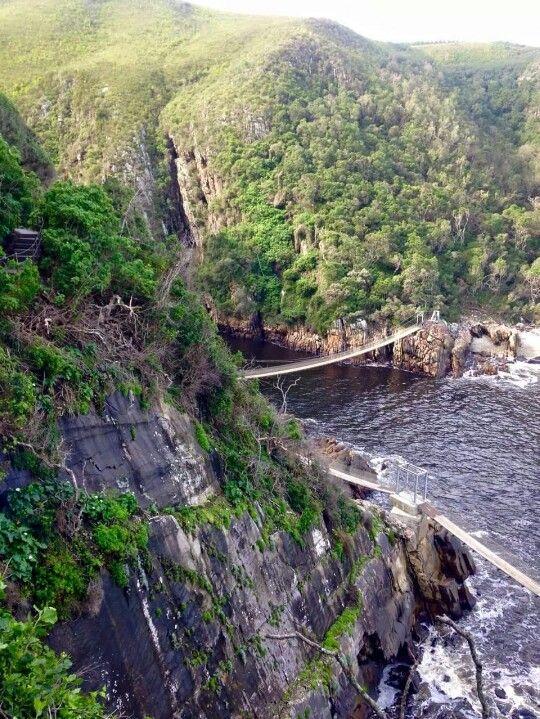 Tsitsikamma National Park, Eastern Cape province
