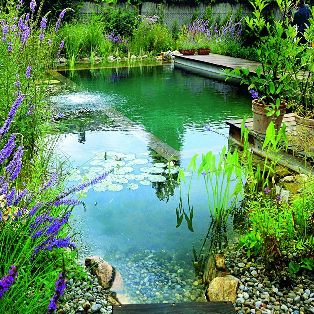 A Biotop Natural Swimming Pool. Isn't it Gorgeous?   A BIOTOP Natural Pool realizes the principle of harmonious coexistence. A wall separates the swimming area from the regeneration zone, where impurities and excess nutrients are decomposed by plants and microorganisms. Awesome, right? :)