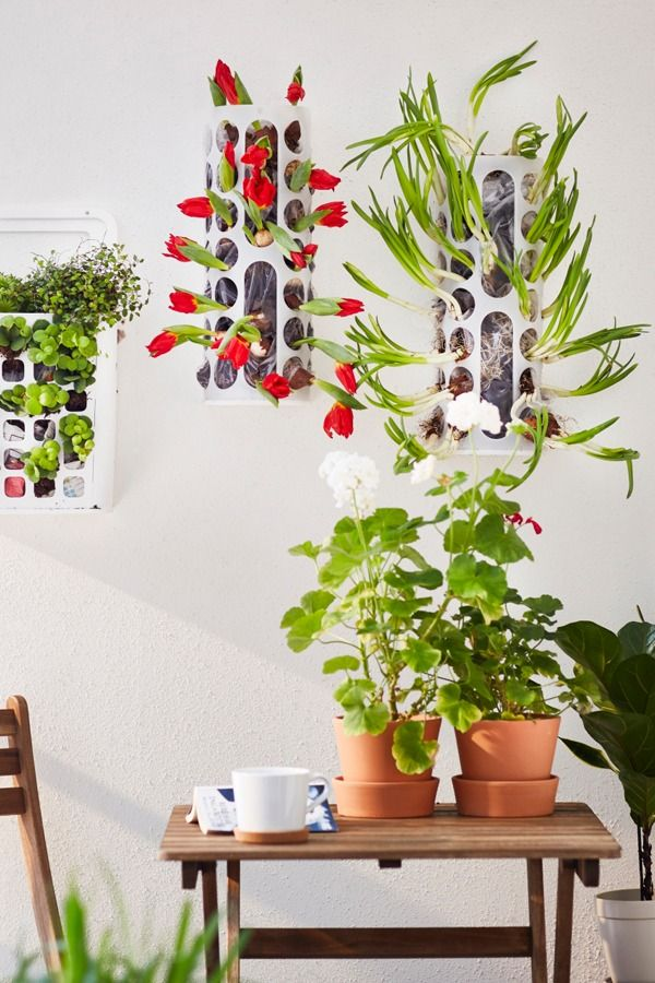 Think outside the box! The IKEA VARIERA plastic bag dispenser is ideal for storing things like plastic bags, toilet paper rolls, gloves or socks, but it can also make a very unique plant holder!