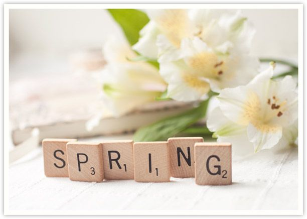 Spring with scrabble letters and white flowers