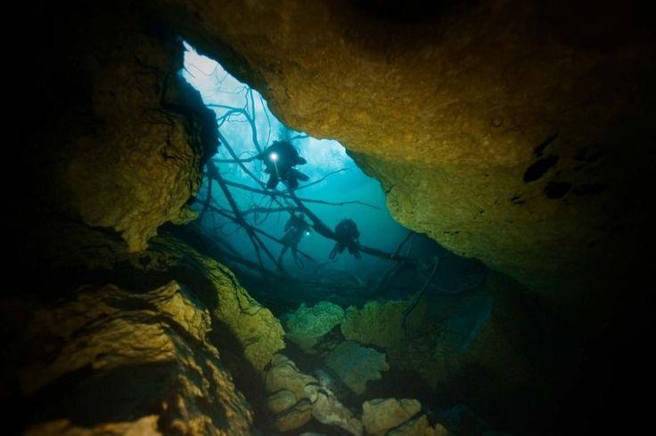 Scuba Diving Magazine #ScubaDivingInfographicsandQuotes #scubadivingquoteshilarious #ScubaDivingMagazine