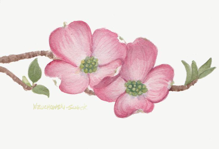 Pink Dogwood 2 5 x 7 Original Watercolor by wandazuchowskischick