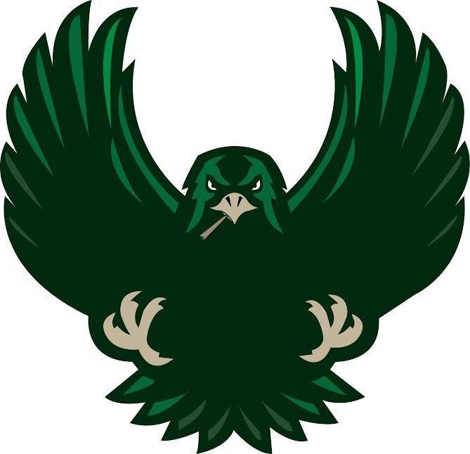hawk logo - Google Search