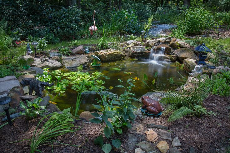 22 best water gardens for customers images on pinterest for Fish pond supplies near me
