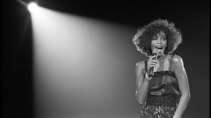 A gripping documentary on the all-too-short life of powerhouse performer Whitney Houston from UK documentarian Nick Broomfield and music video director Rudi Dolezal.Broomfield (Heidi Fleiss: Hollywood Madam, SFF 1996; Aileen Wuornos: The Selling of a Serial Killer, SFF 1993) and Dolezal bring us never-before-seen...
