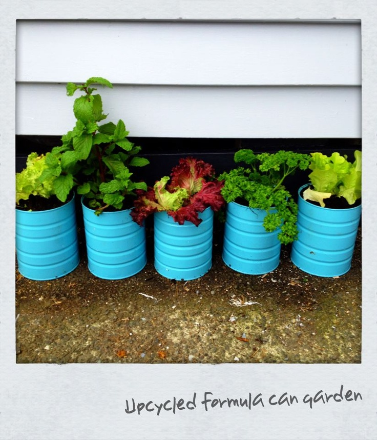 Upcycled baby formula cans    - Punch small drainage holes in the bottom (I used a hammer  nail)  - Paint both outside and inside of can to help stop it rusting (I used 2 coats of spray paint)  - Plant your veges, herbs, flowers and enjoy!