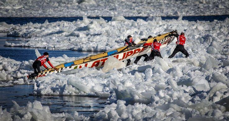 Course de canot à glace.  Photographe: http://www.pagarneau.com   #Course #CanotÀGlace #Hiver #Québec #Carnaval #Sport