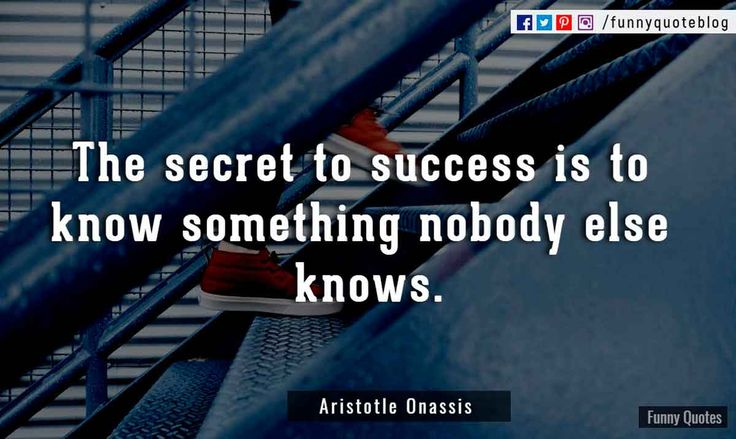 Aristotle Onassis Quotes Quotesgram: 25+ Best Motivational Quotes For Success On Pinterest