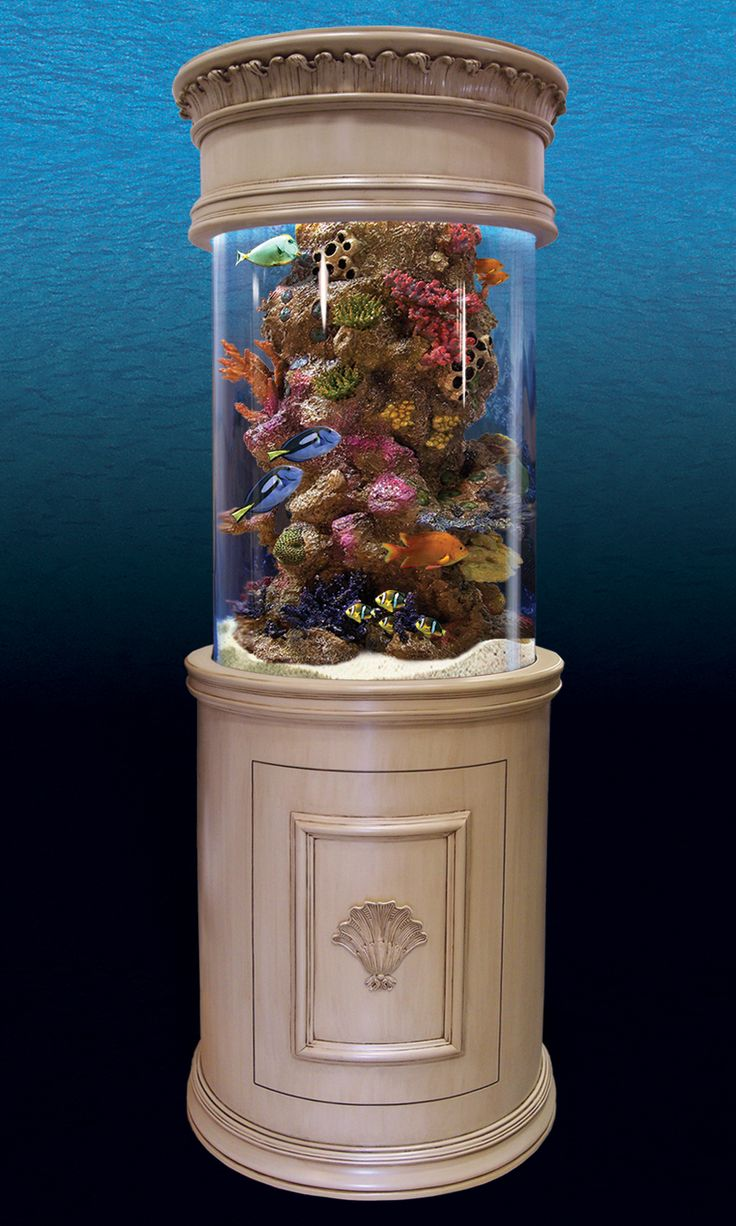 16 best aquarium ideas images on pinterest aquarium ideas fish