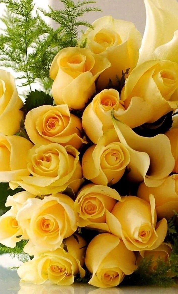Открытки желтые розы красивые букеты
