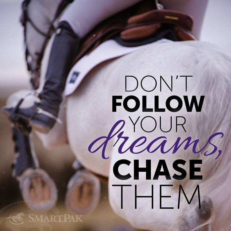 Motivational equestrian quotes | Don't follow your dreams, chase them.