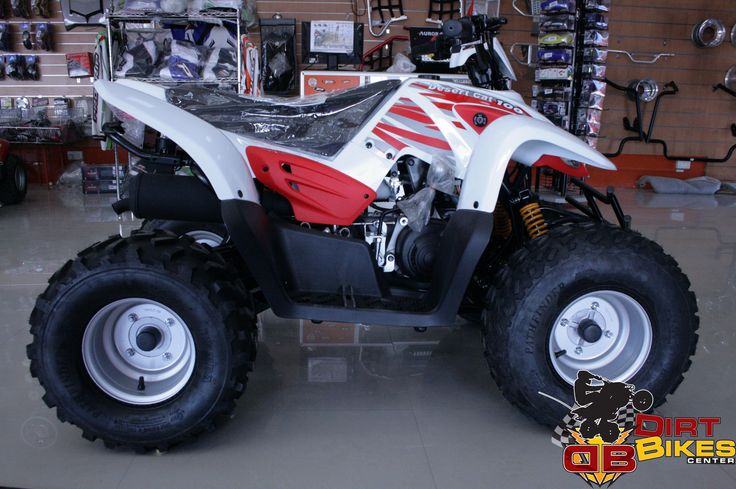 Dirt Bikes Center offering 100 cc Desert Cat for young once. Come and grab the promotional offer. FIND OUT WHERE THE BEST SAND DUNE RIDING AREAS ARE CLOSE TO YOU.. For more details  Call : 04 3333383 Mobile: 0508788400 WatsApp : 0508788400 or email : info@dirtbikedubai.com #dubai #mydubai #mycity #dirtbike #quadbike #bike #4wheelsbike #uae #100cc #accessmotors