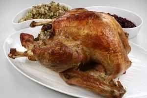 #Thanksgiving #kalkun