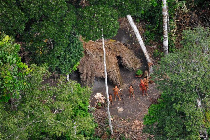 Tribus a vista de pájaro   Fotogalería   Sociedad   EL PAÍS: Uncontacted Tribes, Indian Tribes, Brazilian Guardpost, Brazilian Officials, Uncontacted Indians, 2010, Photo, Amazon