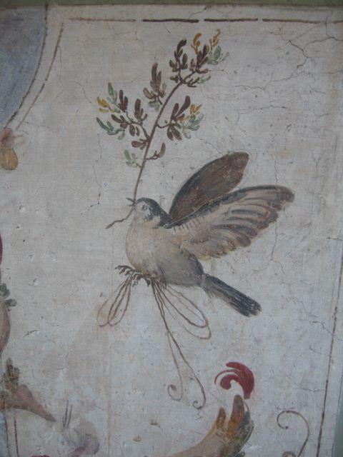 #Pompeii  --  Roman Fresco  --  Excavated from the 'Villa D'Este' at Pompeii.