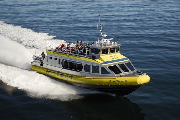 Three ways to get from Vancouver to Victoria, including BC Ferries, a Prince of Whales Whale Watching Tour and Harbour Air Seaplanes.