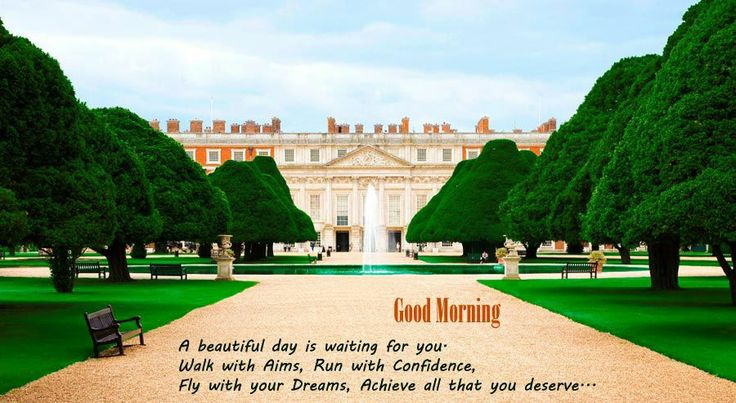 A beautiful day is waiting for you   walk with Aims, Run with confidence   Good morning