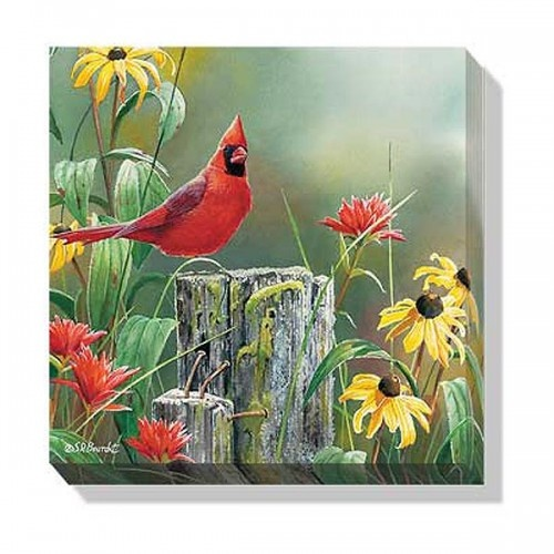 "Greeting the New Day Cardinal Wall Art (10 1/2 x 10 1/2) from Lang.com, F085255426. Full-color artwork by Susan Bourdet Image wraps fully around the edge of the canvas Arrives ready to hang Open edition A Wild Wings exclusive Measures: 10-1/2""h x 10-1/2""w x 1-1/8""d"