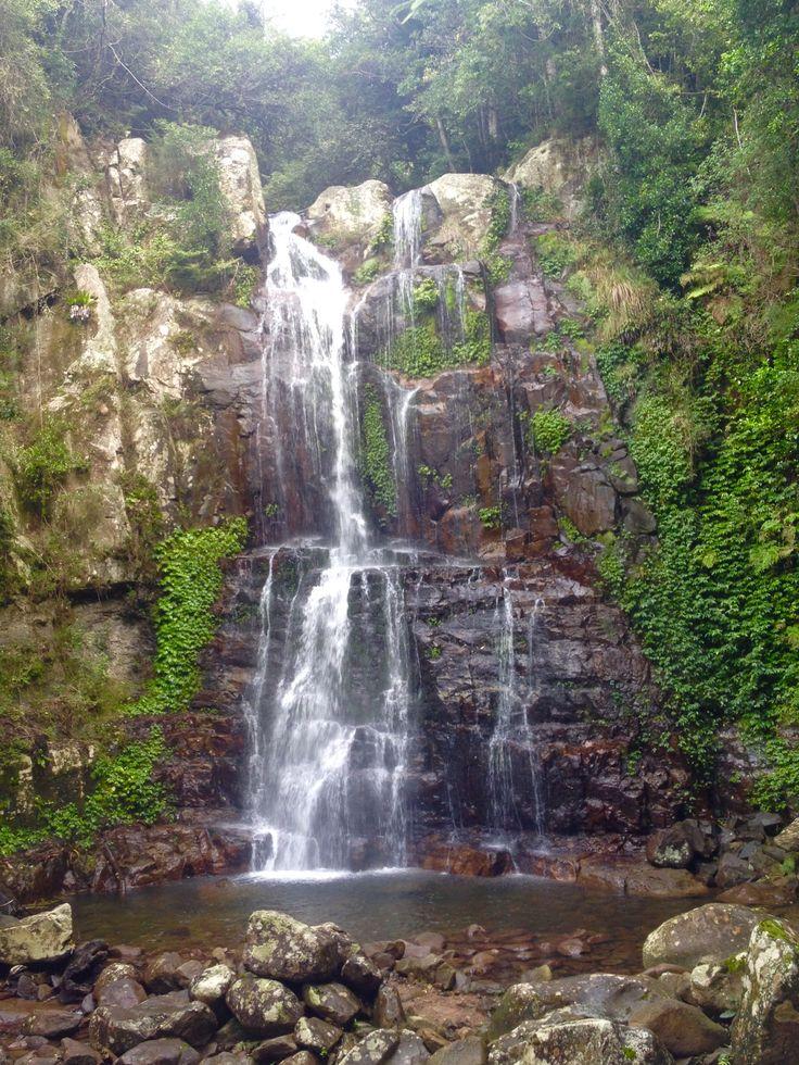 Minnamurra Falls, Budderoo National Park, NSW