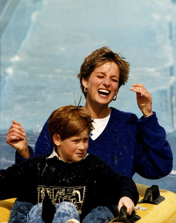 Princess Diana and Prince Harry at Thorpe Park.She was taken far to soon.Please check out my website thanks. www.photopix.co.nz