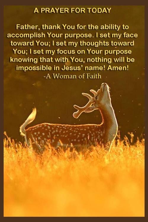 My focus is on GOD.