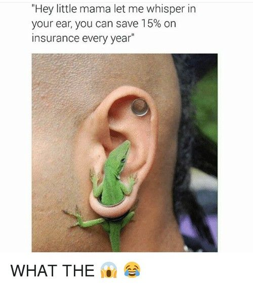 Scientist: when you see this image and your main concern is not the lizard in the man's ear but rather the fact that the lizard is an anole, not a gecko stupid