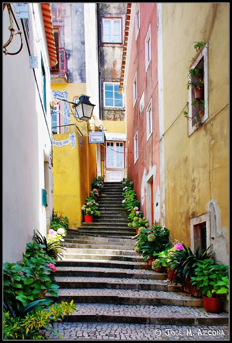 Side Street,  Lisbon, Portugal: I loved Lisbon. So much history!
