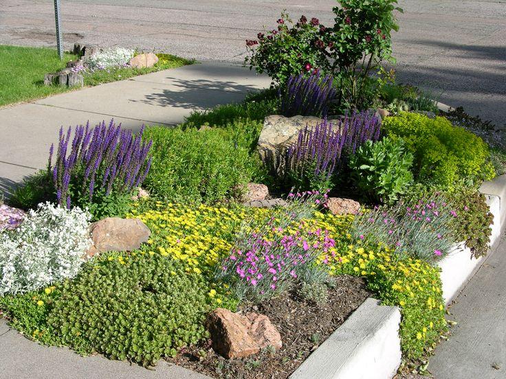 106 best Boulevards images on Pinterest | Front gardens, Front yards Planting Design Gardens Dry on planting a garden, drought tolerant landscape design, modern planting design,