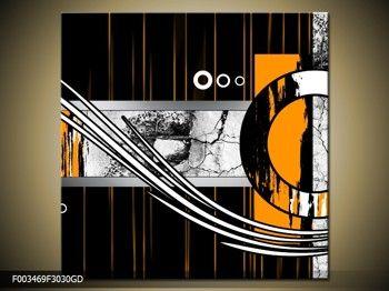 Moderný obraz F003469F3030GD