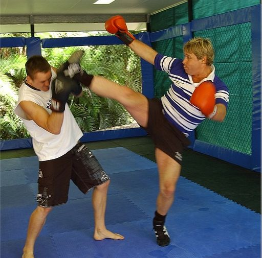 Kyle Noke and the Crocodile Hunter Steve Irwin  'The Crocodile Hunter', Steve Irwin, was reportedly a big martial arts fan and perhaps an even bigger 'Mixed Martial Arts' fan. While on this earth, the beloved Irwin, had a friendship with Kyle Noke, the TUF Nations Team Australia Coach, and through this friendship they trained and sparred MMA.