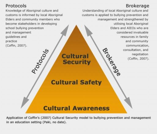 Text Box 4.2 Cultural Security Model Felicity's Notes : Another visual resource from the human rights website that I thought could be included in the program I am looking at designing.