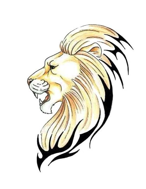 The 34 best Lion Tattoo Outline images on Pinterest ...