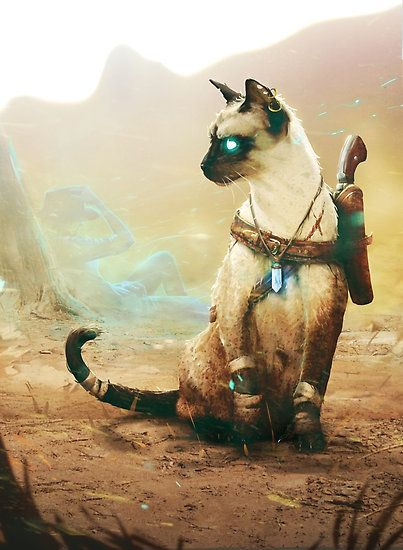 #WritingPrompt: His soul was bound to this feline. He wasn't going to stop until he found revenge on who was responsible. The cat doesn't mind quite get it, but doesn't mind the adventure.  www.writersrelief.com