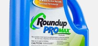 Monsanto ghostwrote studies on the herbicide Roundup for the Environmental Protection Agency, documents unsealed in a federal court case seem to show.