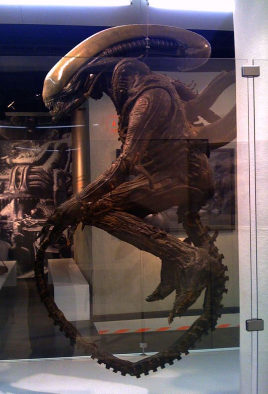 Xenomorph Dog Costume 400 best images about ...
