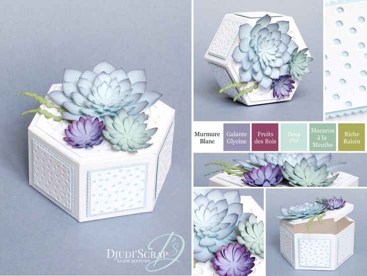Stampin'Up! by Djudi'Scrap - Boîte Home Deco « Thinlits Jardinière, Framelits Plantes Grasses / Window Box Thinlits Dies, Succulent Framelits Dies »