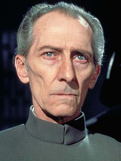 Wilhuff Tarkin was a Human male who was one of the most powerful individuals in the Galactic Empire, a Grand Moff who shaped Imperial doctrine and was the driving force behind the creation of its key embodiment, the Death Star.