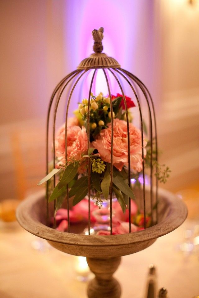 368 best birdcage art and decor images on pinterest bird for Cage d oiseau decorative