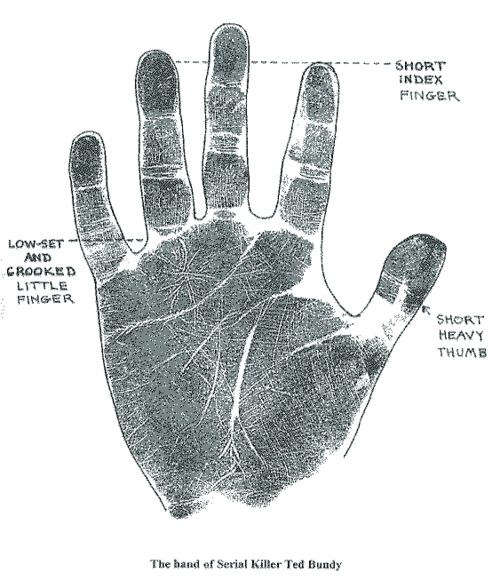 Ted Bundy's handprint. Complete with forensic annotations