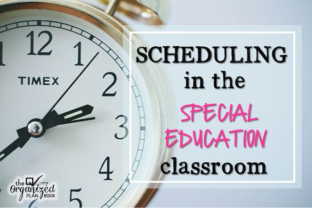 The Organized Plan Book: Special Education Summer Blog Hop - Scheduling