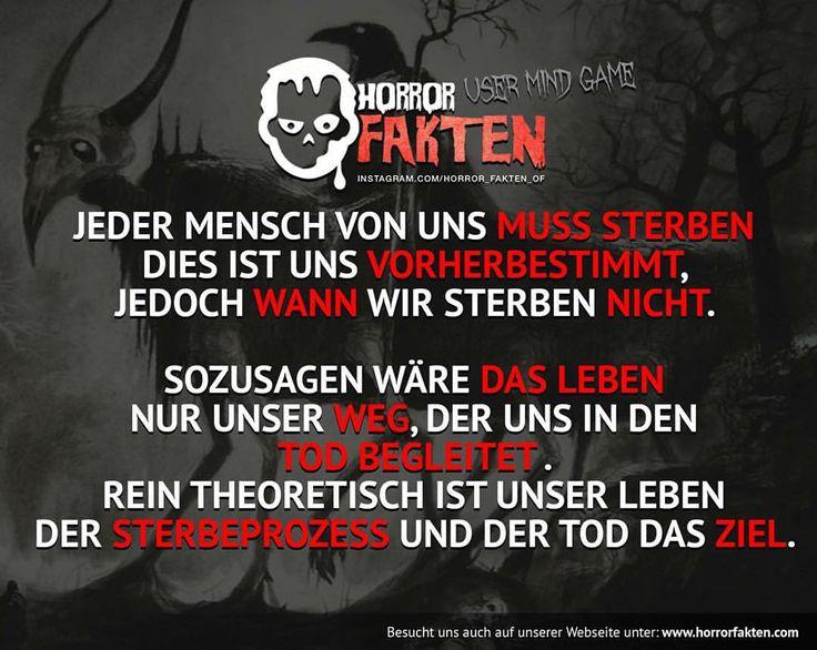 Eine interessante Theorie eines Users, was meint ihr? MINDGAME  #horrorfakten #horror #fakten