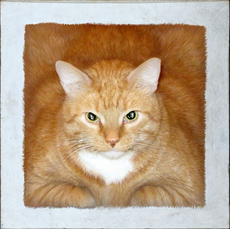 Fat Cat Art Finds The Cat Who Inspired Great Masters