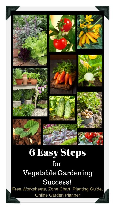 205 best images about vegetable gardening ideas organic - Vegetable garden planting guide zone 6 ...