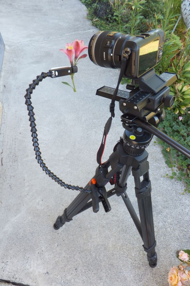 The Plamp is in store now. One end of the Plamp clamps to your tripod while the other grasps the object. Use the Plamp to stabilize windblown subjects, adjust the position or angle of your subject, or move obstructing foliage.