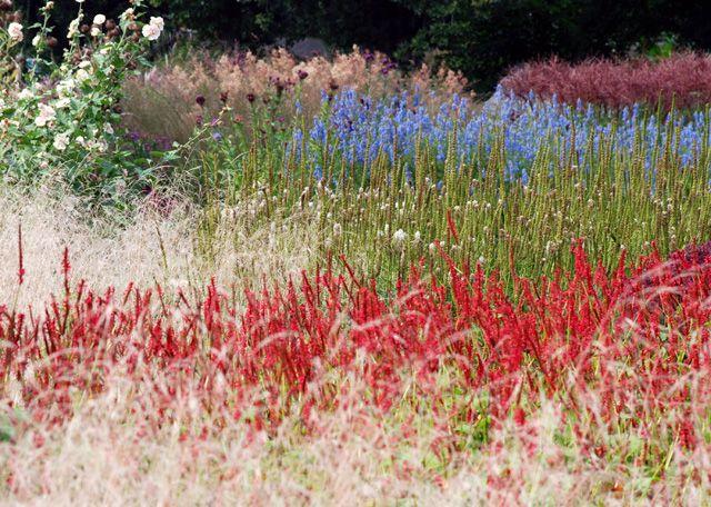 Secret Garden: Best 25+ Prairie Garden Ideas On Pinterest
