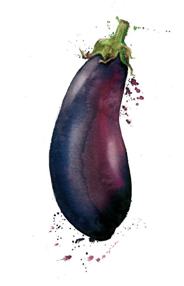 wonderful watercolor painted eggplant, in which i'll attempt to paint as well.: