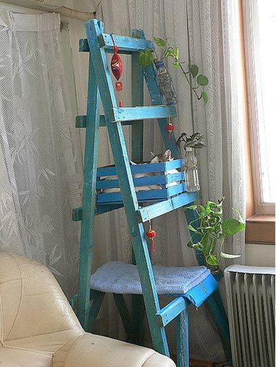 ladder cat tree!